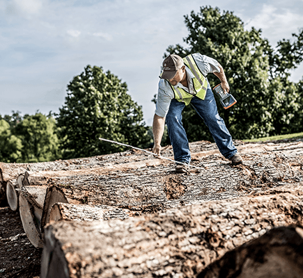 Log Procurement & Sales